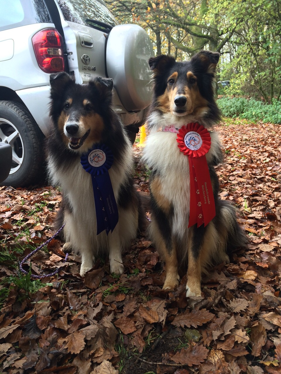 Brianna Rally Obedience Klasse 2
