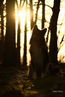 16.02.2015-001_Chiara_copyright_Katharina_Gentgen