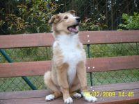 Clyde-Juli-2009-4