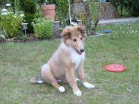 Clyde-Juli-2009-5